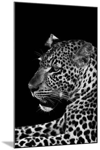Leopard-Donvanstaden-Mounted Art Print