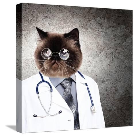 Funny Fluffy Cat Doctor In A Robe And Glasses. Collage-Sergey Nivens-Stretched Canvas Print