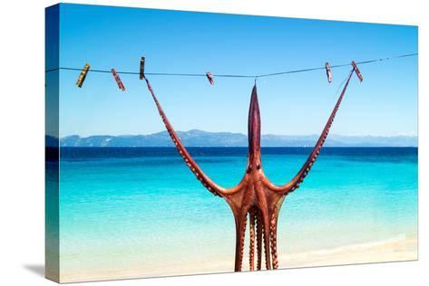 Octopus Hanging Up To Dry In The Sunshine In The Greek Islands-papadimitriou-Stretched Canvas Print