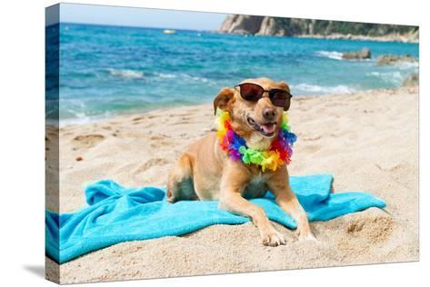 Relaxing Dog At The Beach With Flowers Garland-Ivonnewierink-Stretched Canvas Print