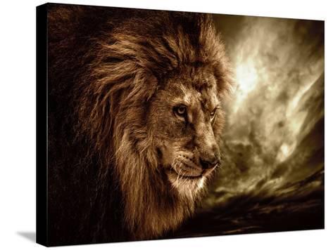 Lion Against Stormy Sky-NejroN Photo-Stretched Canvas Print