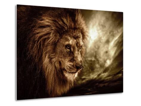 Lion Against Stormy Sky-NejroN Photo-Metal Print