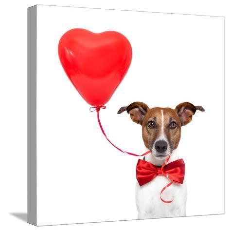 Dog In Love-Javier Brosch-Stretched Canvas Print