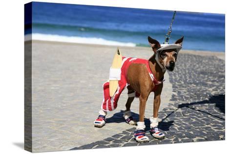 Ipanema Surfer Dog-OSTILL-Stretched Canvas Print