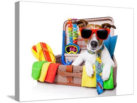 Summer Holiday Dog-Javier Brosch-Stretched Canvas Print