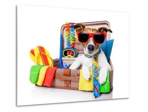 Summer Holiday Dog-Javier Brosch-Metal Print
