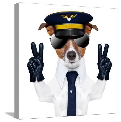 Pilot Dog-Javier Brosch-Stretched Canvas Print