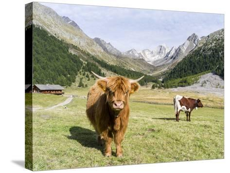 Valley Pfossental, Tyrol, Austria-Martin Zwick-Stretched Canvas Print