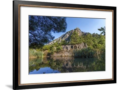 Ruins in Olympos, Antalya, Turkey-Ali Kabas-Framed Art Print