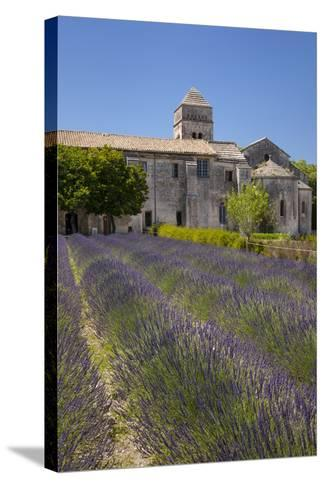 Lavender Below Saint Paul De-Mausole, Saint Remy-De-Provence, France-Brian Jannsen-Stretched Canvas Print