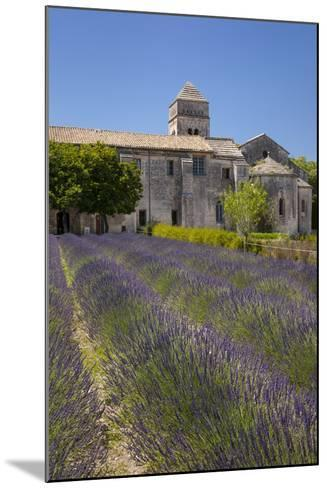 Lavender Below Saint Paul De-Mausole, Saint Remy-De-Provence, France-Brian Jannsen-Mounted Photographic Print