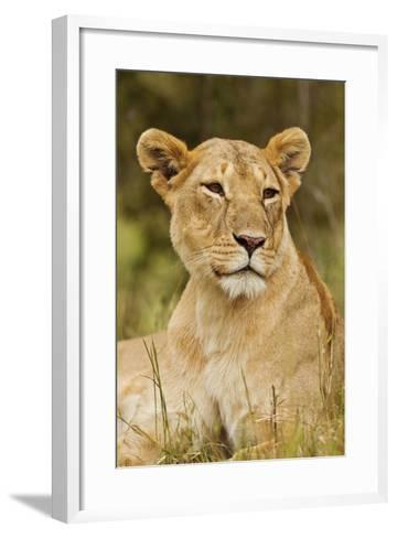 Lioness Up Close, Maasai Mara Wildlife Reserve, Kenya-Jagdeep Rajput-Framed Art Print