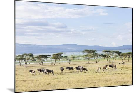 Lake Naivasha and Crescent Island Game Park, Naivasha, Kenya-Martin Zwick-Mounted Photographic Print