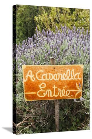 Outdoor Bar Sign, Pigna, La Balagne, Corsica, France-Walter Bibikow-Stretched Canvas Print