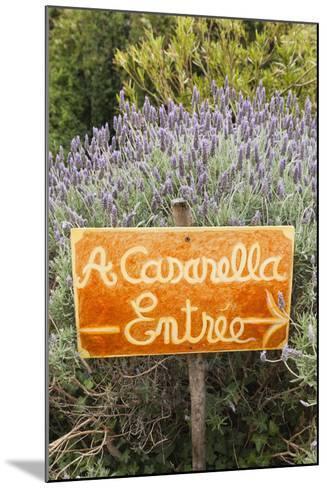 Outdoor Bar Sign, Pigna, La Balagne, Corsica, France-Walter Bibikow-Mounted Photographic Print