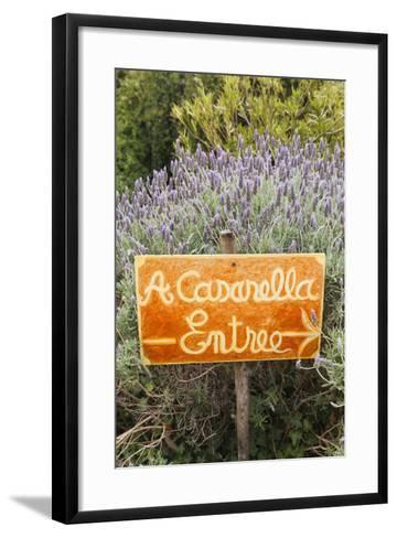 Outdoor Bar Sign, Pigna, La Balagne, Corsica, France-Walter Bibikow-Framed Art Print