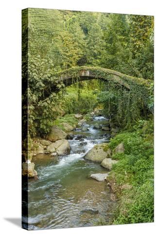 Stream and Bridge, Rize, Black Sea Region of Turkey-Ali Kabas-Stretched Canvas Print