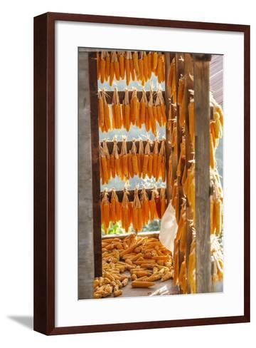 Corn Hung to Dry, Rize, Black Sea Region of Turkey-Ali Kabas-Framed Art Print