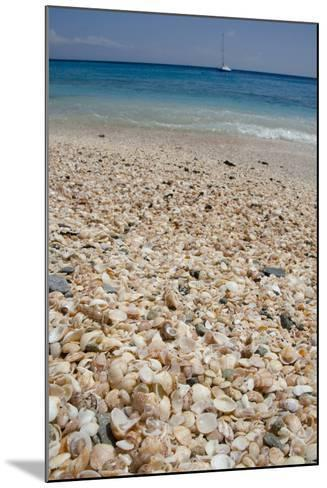 Capital City of Gustavia, Shell Beach, St. Bart's, West Indies-Cindy Miller Hopkins-Mounted Photographic Print