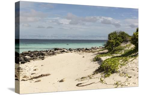 View of Beach and Sea of Zanj, Ihla Das Rolas, Mozambique-Alida Latham-Stretched Canvas Print