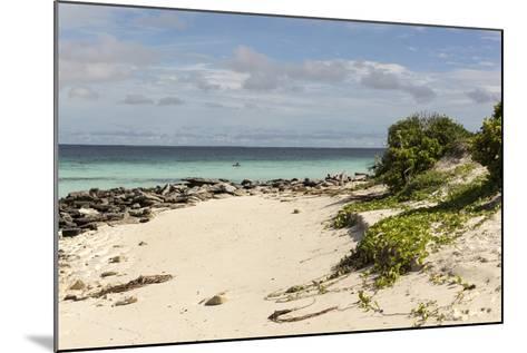 View of Beach and Sea of Zanj, Ihla Das Rolas, Mozambique-Alida Latham-Mounted Photographic Print
