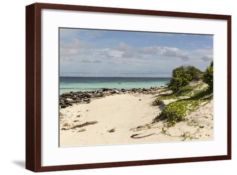 View of Beach and Sea of Zanj, Ihla Das Rolas, Mozambique-Alida Latham-Framed Art Print