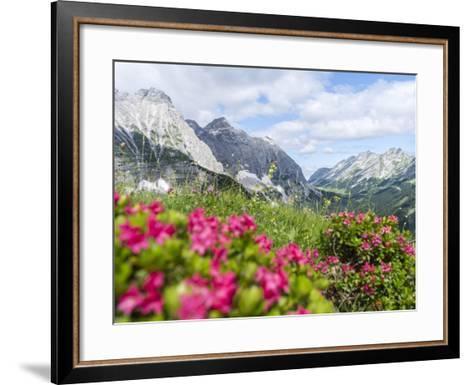 Karwendel Mountain Range, Tyrol, Austria-Martin Zwick-Framed Art Print