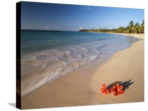 Tropical Paradise, Tabyana Beach, Roatan, Honduras-Stuart Westmorland-Stretched Canvas Print