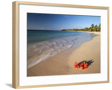 Tropical Paradise, Tabyana Beach, Roatan, Honduras-Stuart Westmorland-Framed Art Print