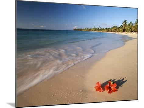 Tropical Paradise, Tabyana Beach, Roatan, Honduras-Stuart Westmorland-Mounted Photographic Print