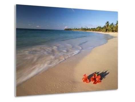 Tropical Paradise, Tabyana Beach, Roatan, Honduras-Stuart Westmorland-Metal Print