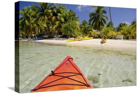 Kayaking in Clear Waters, Southwater Cay, Belize-Cindy Miller Hopkins-Stretched Canvas Print