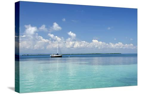 Sailboat in Clear Caribbean Sea, Southwater Cay, Stann Creek, Belize-Cindy Miller Hopkins-Stretched Canvas Print