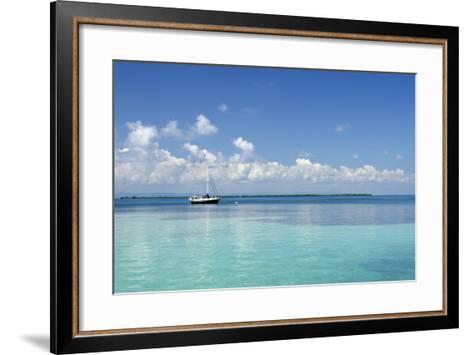 Sailboat in Clear Caribbean Sea, Southwater Cay, Stann Creek, Belize-Cindy Miller Hopkins-Framed Art Print