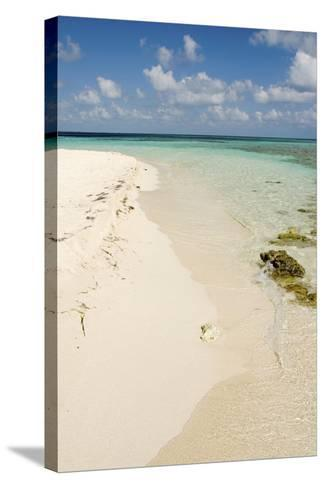 Sandy Beachfront View, Goff Caye, Belize-Cindy Miller Hopkins-Stretched Canvas Print