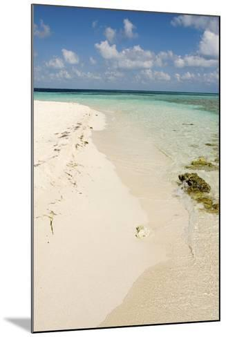 Sandy Beachfront View, Goff Caye, Belize-Cindy Miller Hopkins-Mounted Photographic Print