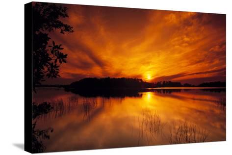 Dreamy Sunset in Swampy Waters, Everglades National Park, Florida, USA-Jerry Ginsberg-Stretched Canvas Print