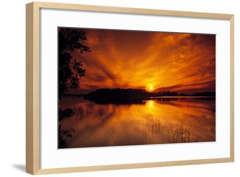 Dreamy Sunset in Swampy Waters, Everglades National Park, Florida, USA-Jerry Ginsberg-Framed Art Print