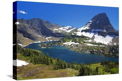Hanging Gardens, Logan Pass, Glacier National Park, Montana, USA-Charles Gurche-Stretched Canvas Print