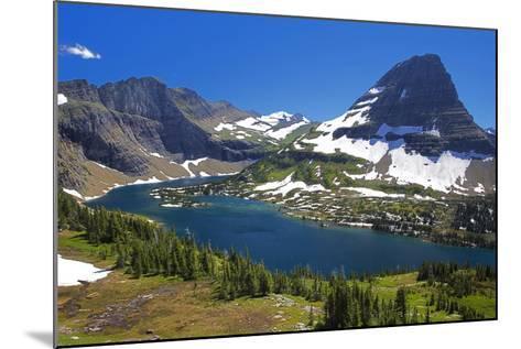 Hanging Gardens, Logan Pass, Glacier National Park, Montana, USA-Charles Gurche-Mounted Photographic Print