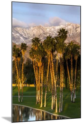 Desert Island Golf and Country Club, Palm Springs, California, USA-Richard Duval-Mounted Photographic Print