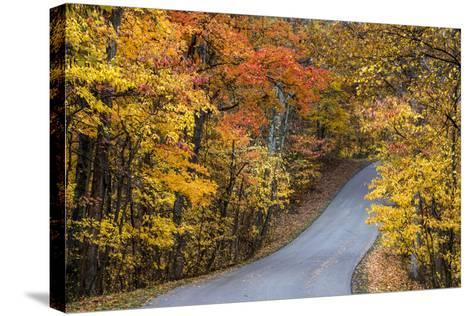 Autumn Color at Brown County State Park, Indiana, USA-Chuck Haney-Stretched Canvas Print