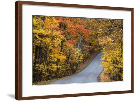 Autumn Color at Brown County State Park, Indiana, USA-Chuck Haney-Framed Art Print