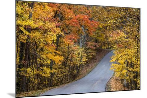 Autumn Color at Brown County State Park, Indiana, USA-Chuck Haney-Mounted Photographic Print