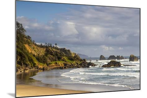 Indian Beach at Ecola State Park in Cannon Beach, Oregon, USA-Chuck Haney-Mounted Photographic Print
