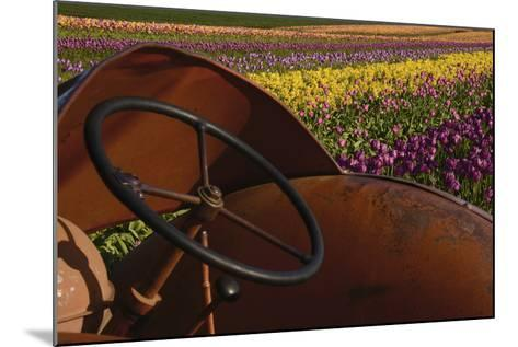 Tractor at the Tulip Festival, Woodburn, Oregon, USA-Michel Hersen-Mounted Photographic Print