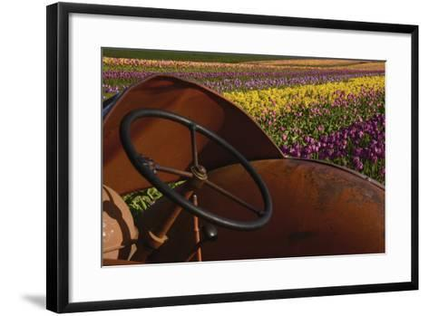 Tractor at the Tulip Festival, Woodburn, Oregon, USA-Michel Hersen-Framed Art Print