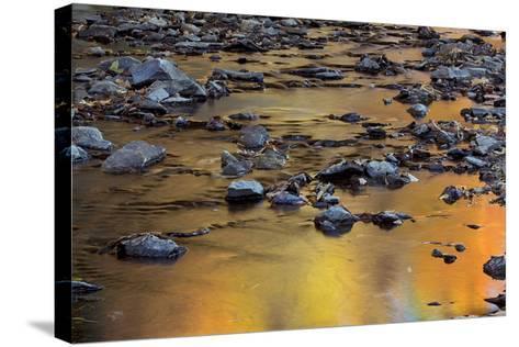 Tomahawk Creek, Leawood, Johnson County, Kansas, USA-Charles Gurche-Stretched Canvas Print