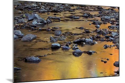 Tomahawk Creek, Leawood, Johnson County, Kansas, USA-Charles Gurche-Mounted Photographic Print