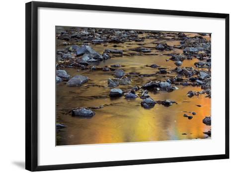 Tomahawk Creek, Leawood, Johnson County, Kansas, USA-Charles Gurche-Framed Art Print